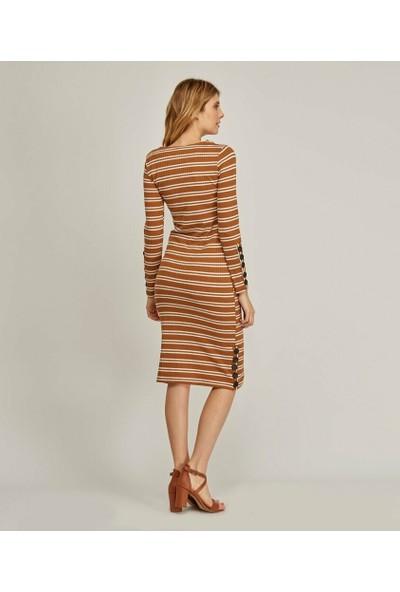 Şamdan Kadın Taba Çizgili Elbise