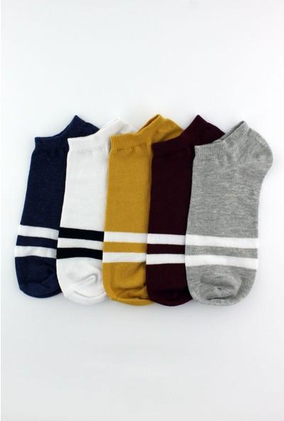 Trick Or Treat 5'li Paket Çizgili Sneaker Boy Görünmez Farklı Renklerde Erkek Çorap