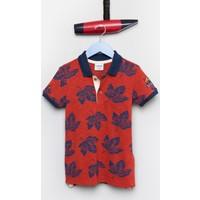 U.S. Polo Assn. Erkek Çocuk Porter T-Shirt Kırmızı