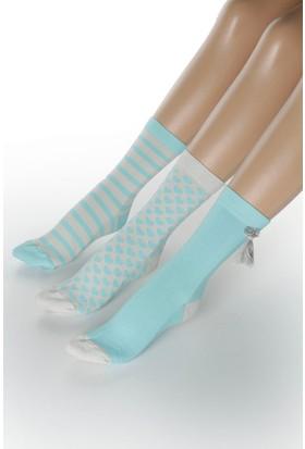 Hays Evia Kutulu 3'lü Pamuklu Kadın Çorap