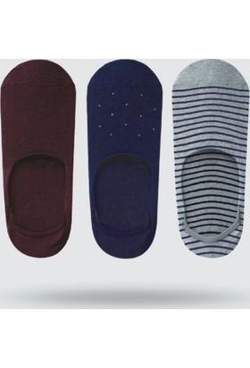 Üçlü Urban Couture 17S Merserize No Show Çorap