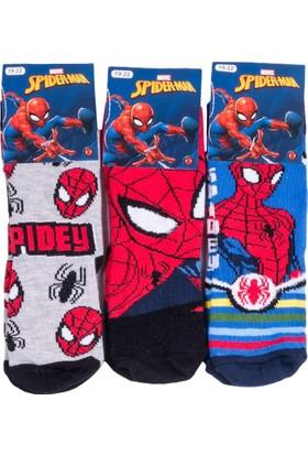 Spiderman SP12227 Çocuk 3'lü Soket Çorap
