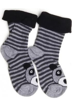 Soobe Erkek Çocuk Newborn Çorap