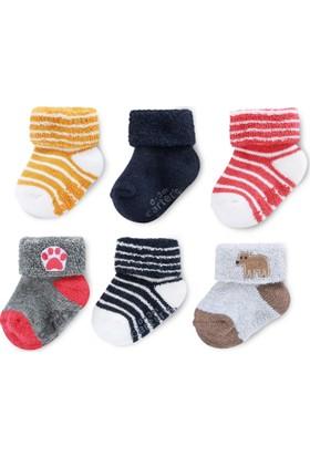 Carter's Erkek Bebek 6'lı Çorap Cr03405