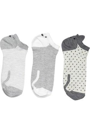 Collezione Kadın Çorap Granger 3'lü Patik Gri