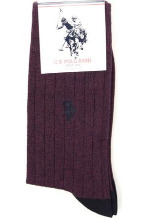 U.S. Polo Assn. Erkek Declan Çorap
