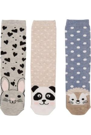 DeFacto 3'lü Çorap Seti