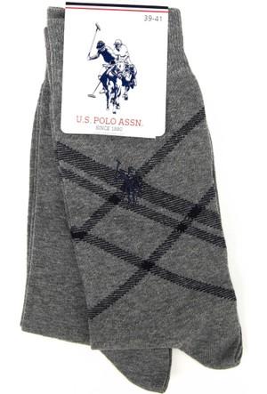 U.S. Polo Assn. Erkek Felipesk7 Çorap
