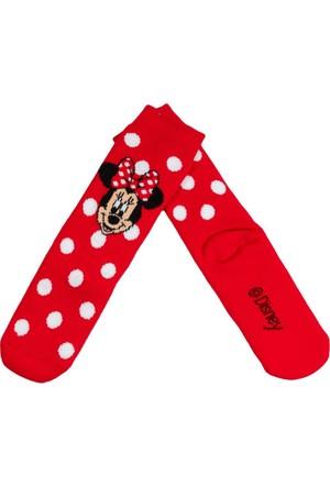 Minnie Mouse MN12431 Çocuk Termal Çorap
