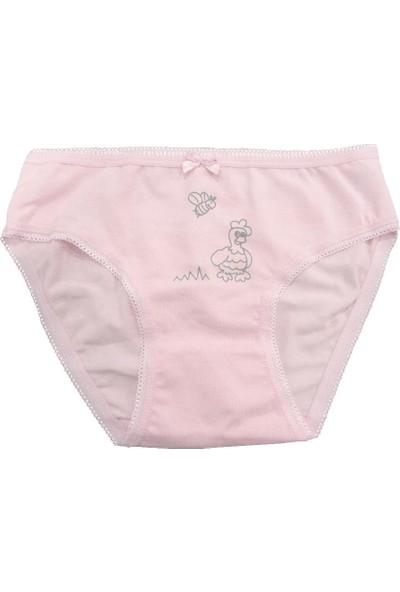 Özkan 2'Li Paket Kız Çocuk Külot 41031-1 Karışık