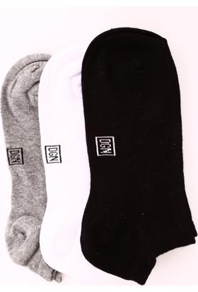 Dgn 2303 Kadın 3'Lü Patik Çorap