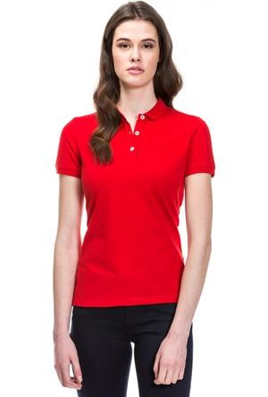Nautica Kadın Polo T-Shirt 71K006T.6KR