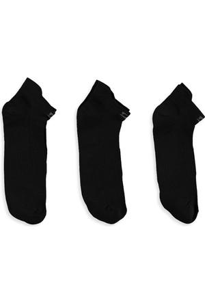 LC Waikiki Erkek Patik Çorap 3'Lü