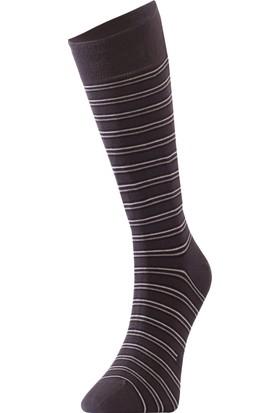 TheDON Bamboo Çizgili Erkek Çorap 3'lü Paket