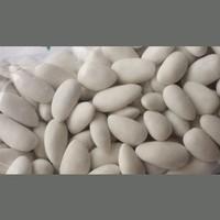 Tahtakale Toptancısı Dökme Şeker Badem Beyaz Kg