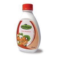 Evergreen Sardunyalar için Sıvı Bitki Besini
