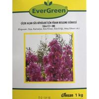 Evergreen Çiçek Açan Süs Bitkileri için Fidan Besleme Gübresi