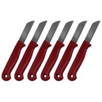 Pratik Şeyler 6'Lı Meyve Ve Piknik Bıçağı Kırmızı-Yeşil-Mavi