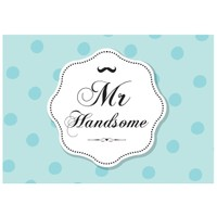 Cushion Design 2 li Mr Handsome Amerikan Servis