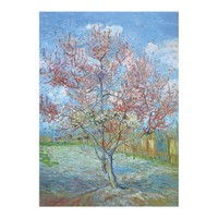 ARTİKEL Peach Tree in Bloom 50x70 KS-1070