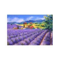 ARTİKEL Lavender Garden 2 Parça Kanvas Tablo 60x40 cm KS-840