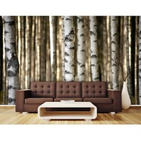 Artmodel Ağaçlar Manzaralı Poster Duvar Kağıdı PDM-90