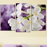 Decostil Beyaz Çiçekler 3 Parça 81x50 Kanvas Tablo