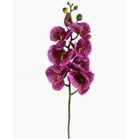 Desen Home Yapay Jumbo Phalaenopsis Orkide Gerçek Dokunuş Fuşya Benekli 100 cm