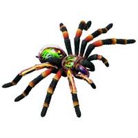 4D Master Hayvan Anatomisi Puzzle Tarantula