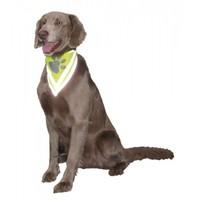 Nobby Safety Köpek Güvenlik Bandanası XS-S