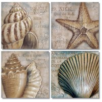 Fotocron Vintage Sea Shells 4'lü Tablo