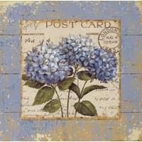 Fotocron Dekoratif Tablo Post Card
