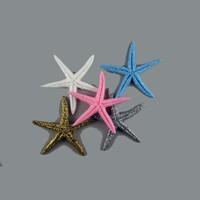 Tahtakale Toptancısı Deniz Yıldızı Orta Boy (100 Adet)