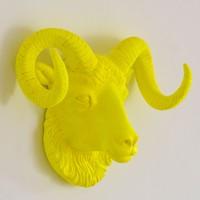 İki Lob Dekoratif Koç Kafası Büstü Neon Renkler