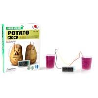 Toptancı Kapında Potato Clock Elektriğini Patatesten Üreten Dijital Saat