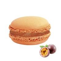 Nefis Gurme Çarkıfelek Deluxe Parisian Macaron 27'Li