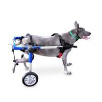 Köpek Yürüteç -Medium/Large