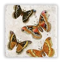 Oscar Stone Butterfly Effect Taş Tablo