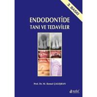 Endodontide Tanı ve Tedaviler