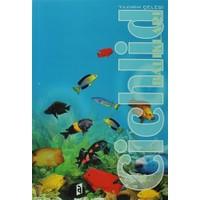 Cichlid Balıkları - Yıldırım Çelebi