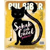 Pul Biber Dergisi Sayı : 8 Mayıs 2016