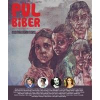 Pul Biber Dergisi Sayı : 3 Aralık 2015