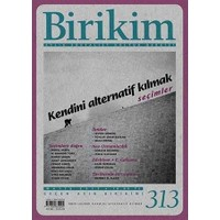 Birikim Aylık Edebiyat Kültür Dergisi Sayı: 313