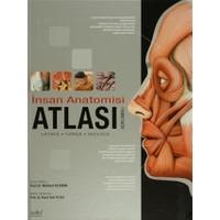 İnsan Anatomisi Atlası (Açıklamalı) Latince - Türkçe - İngilizce