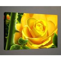 Kanvas Tablo - Çiçek Resimleri - C147
