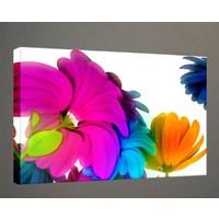 Kanvas Tablo - Çiçek Resimleri - C247