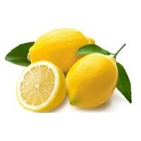 Yeşil Deniz Fidancılık Limon