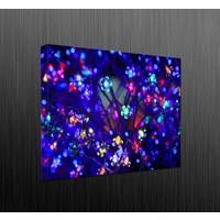 Duvar Tasarım DLC6035 Led Işıklı Kanvas Tablo - 60x40 cm