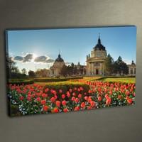Duvar Tasarım DC 3007 Kanvas Tablo - 50x70 cm