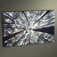 Duvar Tasarım DC 3043 Kanvas Tablo - 50x70 cm